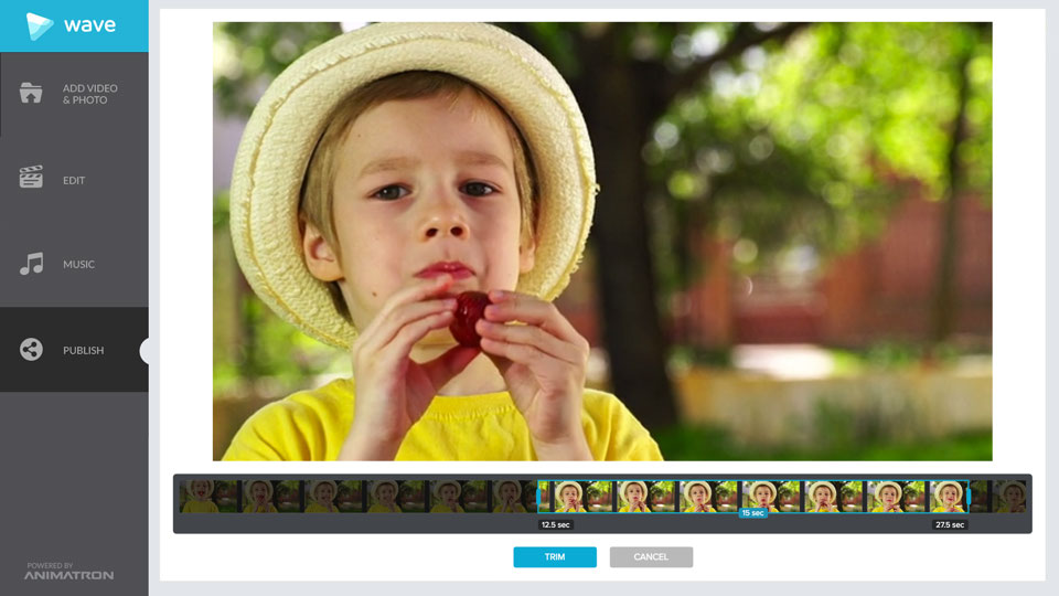 Trim your videos with Wave.video, an easy-to-use online video editor